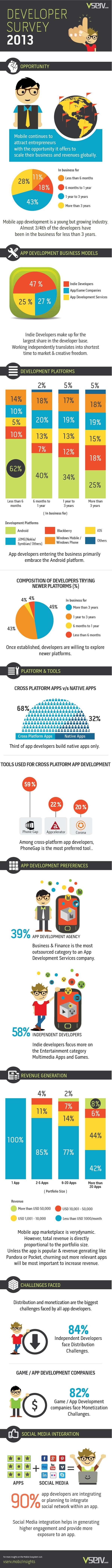 Developer Survey Infographic v2
