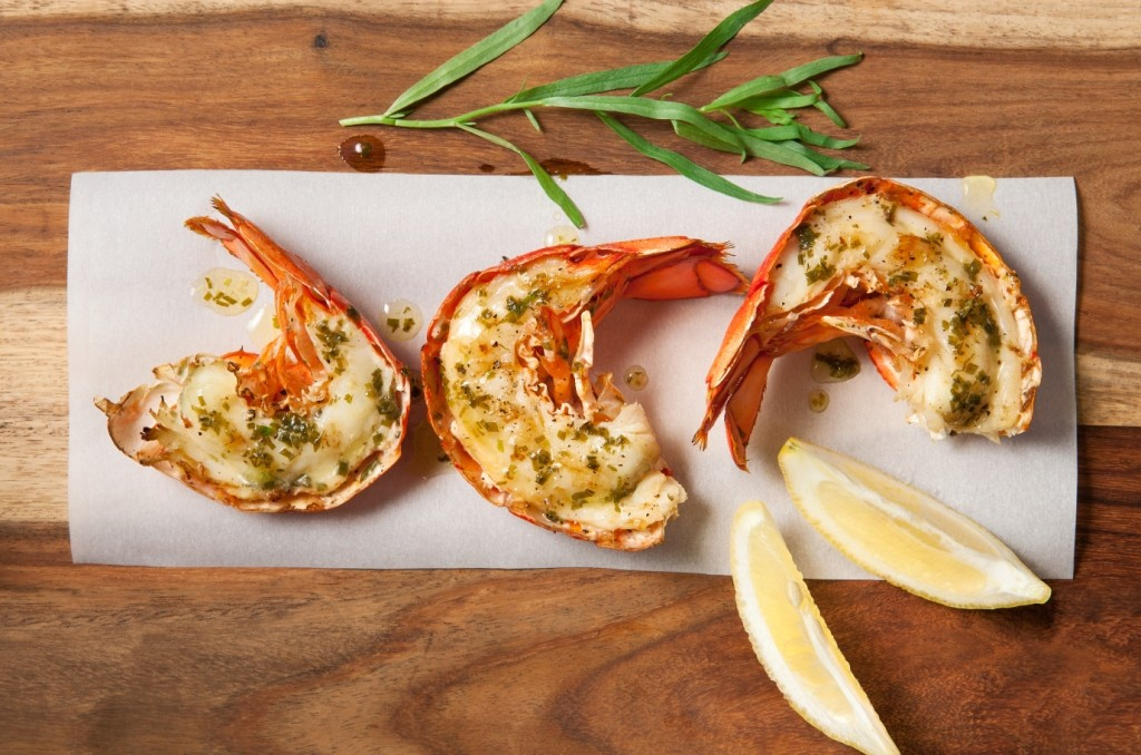 lobstar2